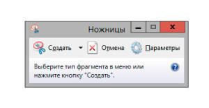 Скриншот в Windows